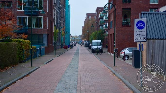 Cycle street, fietsstraat, Delft, NL