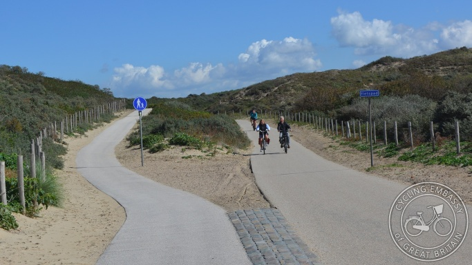 Cycle path with separate footway, Vogelwijk, NL
