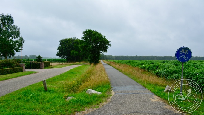Filtered rural road, Assen, NL