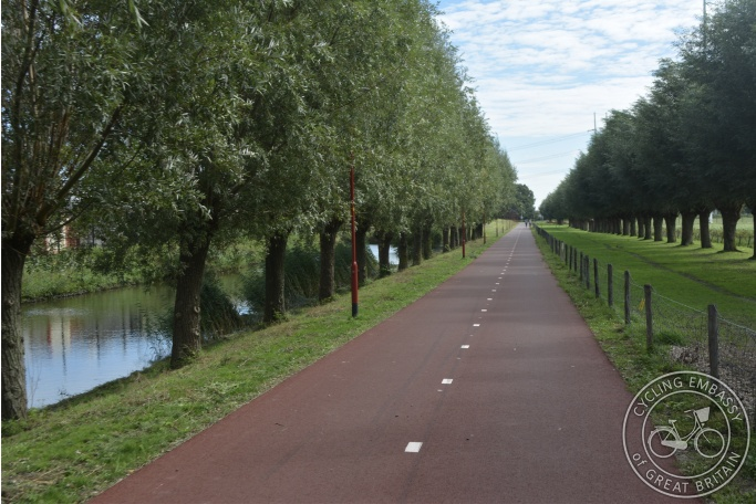 Resurfaced cycle path with street lighting and tree protection, Zoetermeer, NL