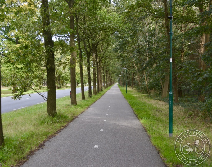 Cycle path with street lighting and vegetation, Zeist, NL