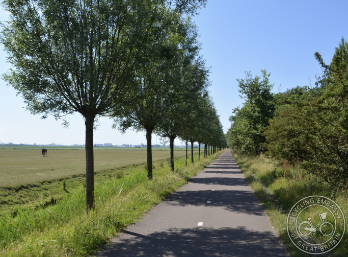 Cycle path with tree planting, Hoek van Holland