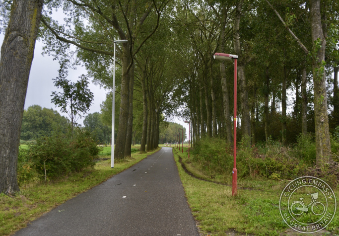 Cycle path with trees and street lighting, Zoetermeer, The Netherlands