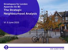 Strategic Neighbourhood Analysis